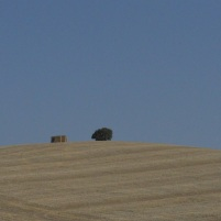 Rolling hills, Wheat Fields, Cadiz Province