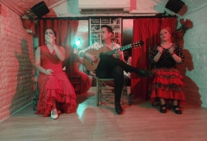 Flamenco, Granada