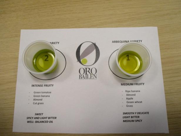 Extra Virgin Olive Oil tasting Oro Bailen